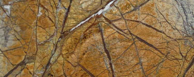 Мрамор Бидасар Форест Голд (Bidasar Forest Gold)